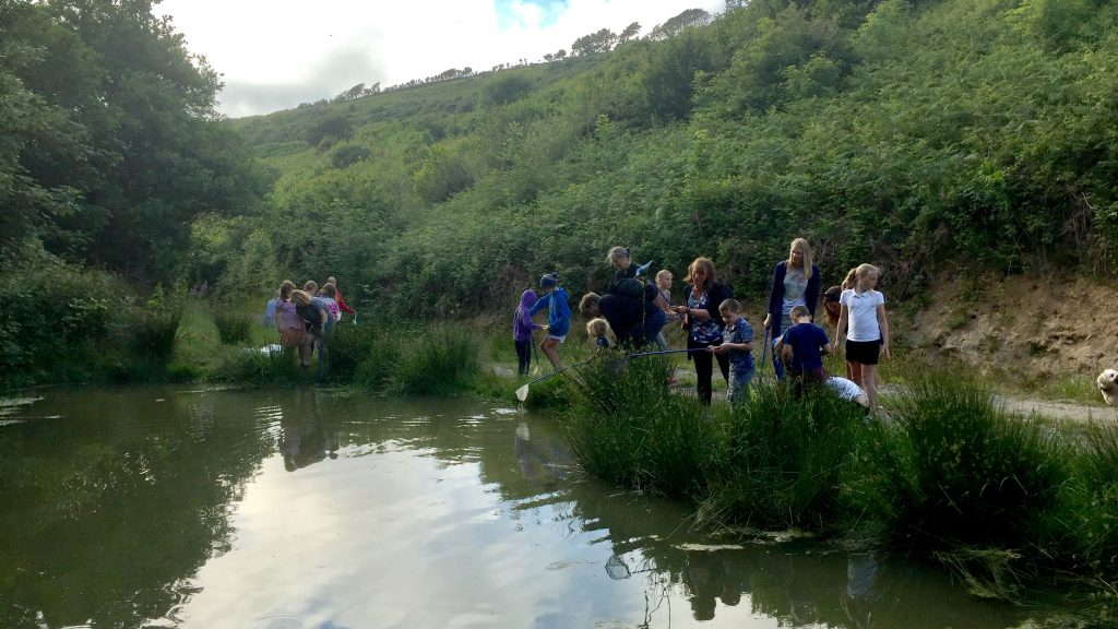 Children and adults taking part in half term pond dipping on the walks of Kilkhampton Common Cornwall with Westland Countryside Stewards