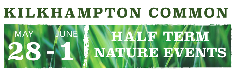 Kilkhampton Common Half Term Nature Events