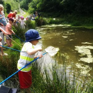 Westland Countryside Stewards Pond Dipping Event Lower Pond on Kilkhampton Common. Numerous families lining the pond with children dipping nets into the water